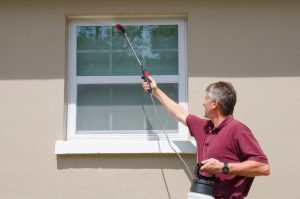 Warm Weather Can Mean Unwanted Pests. Here's How to Enjoy a Bug-Free Summer